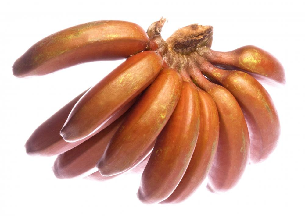 Red bananas.