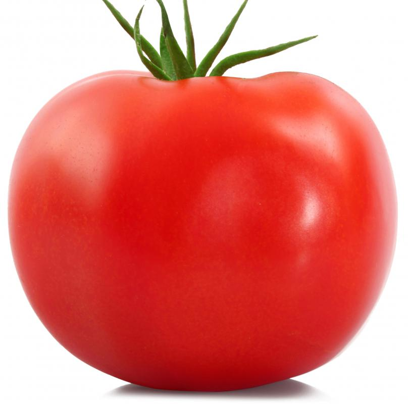 Tomatoes are a popular thing to grow in a garden.