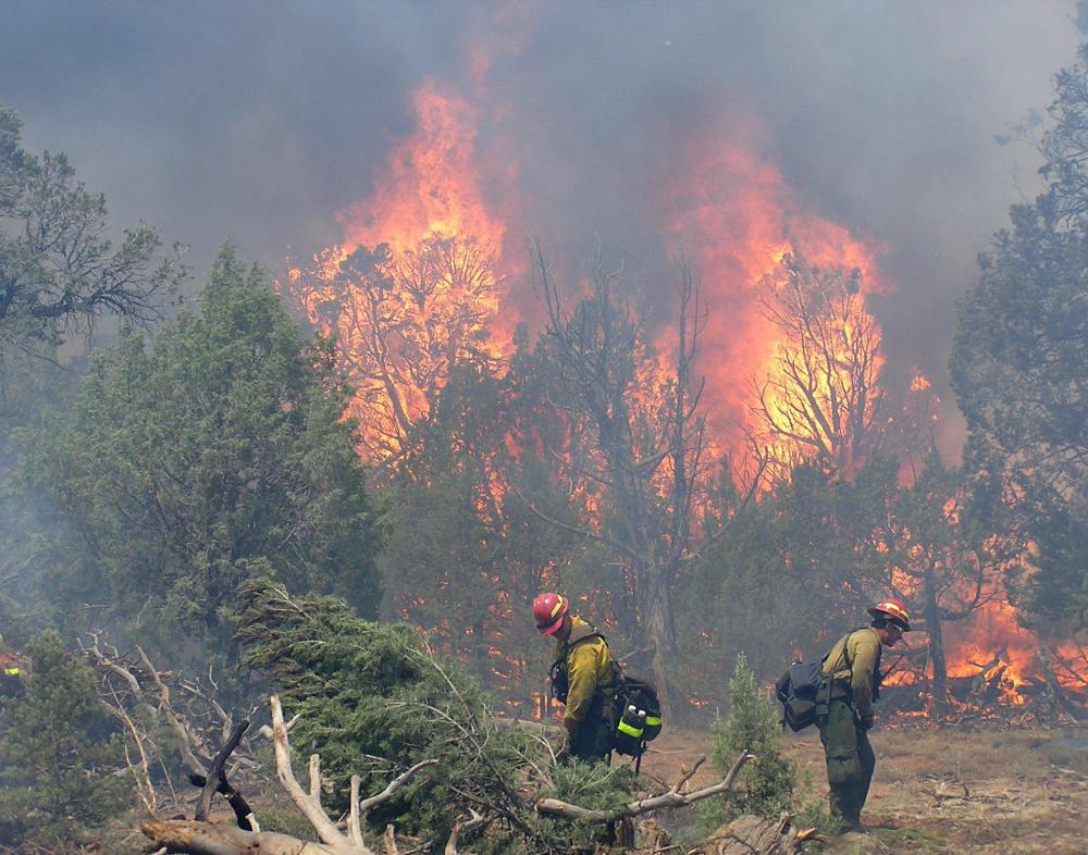 If needed, firefighters work to control and contain wildfires.