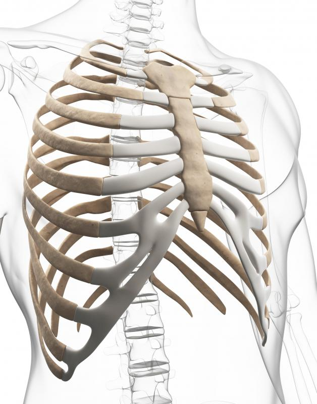 The xiphoid process may feel like a hard lump on the sternum.