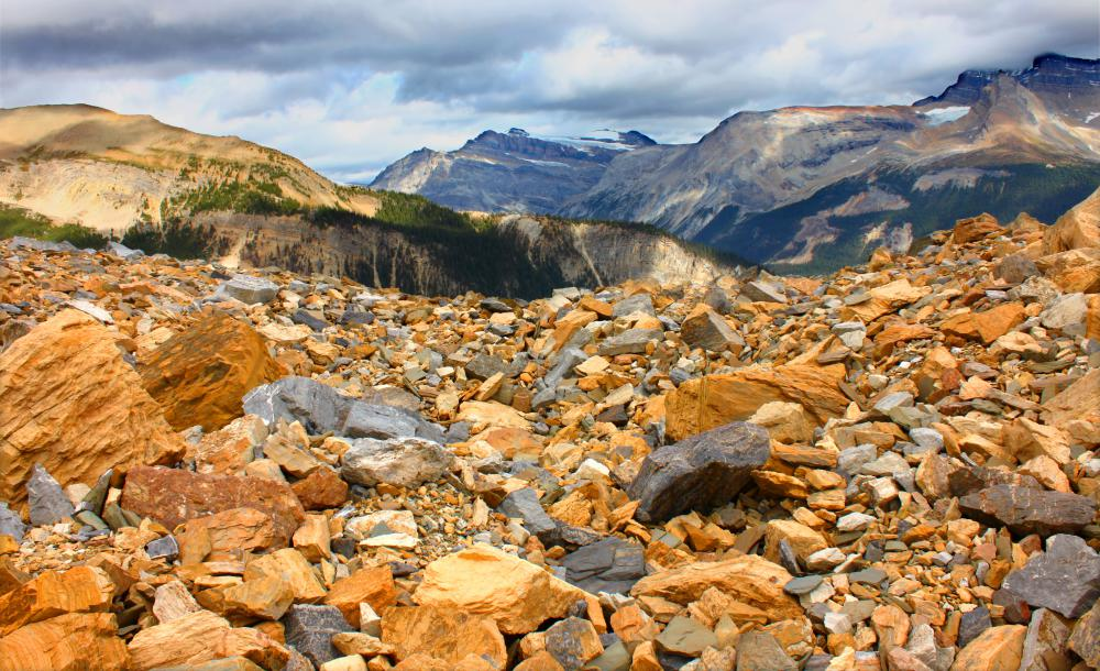 Different types of career in geology?