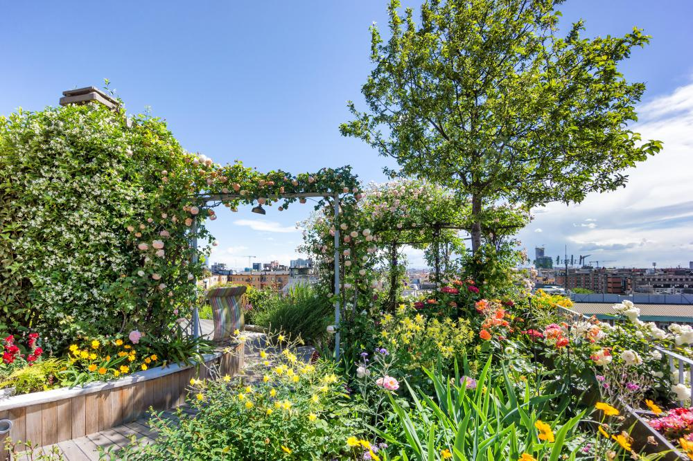 A terrace garden can be located on a rooftop.
