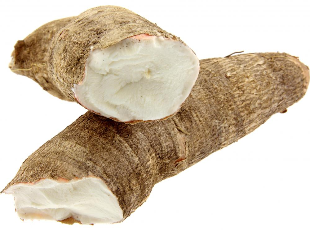 Cassava roots are a natural source of cyanide.