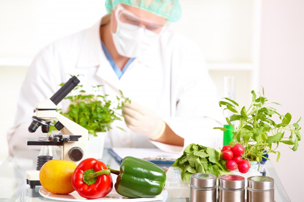 Food science is a broad field that studies things like food composition, process, safety, nutrition, and consumption.