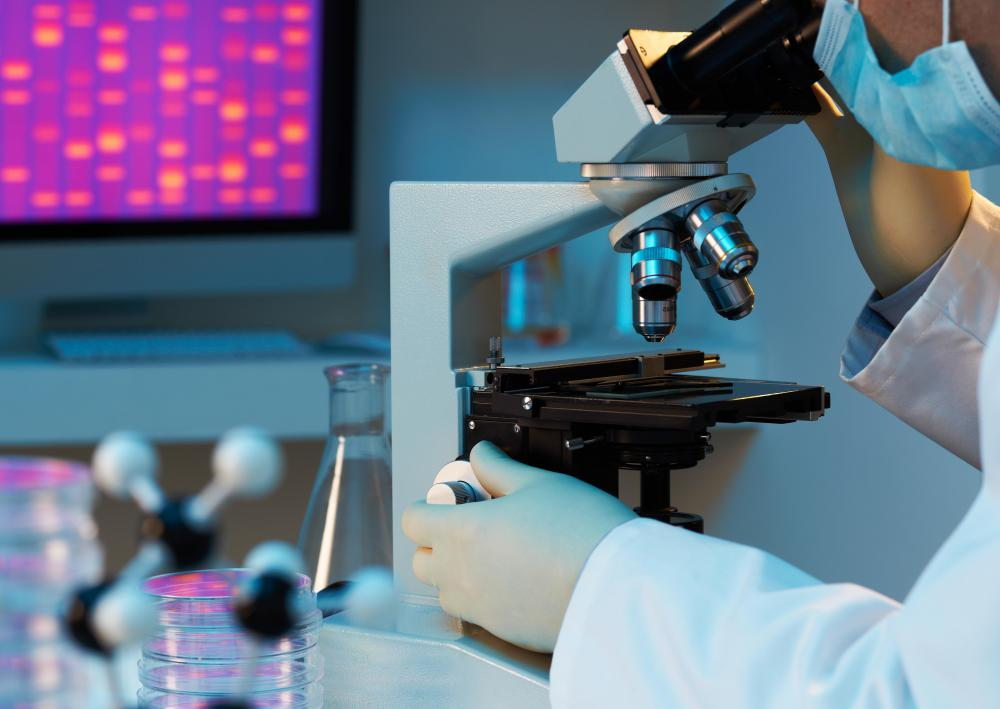 Most microscopes are capable of lighting up the object on the viewing stage.