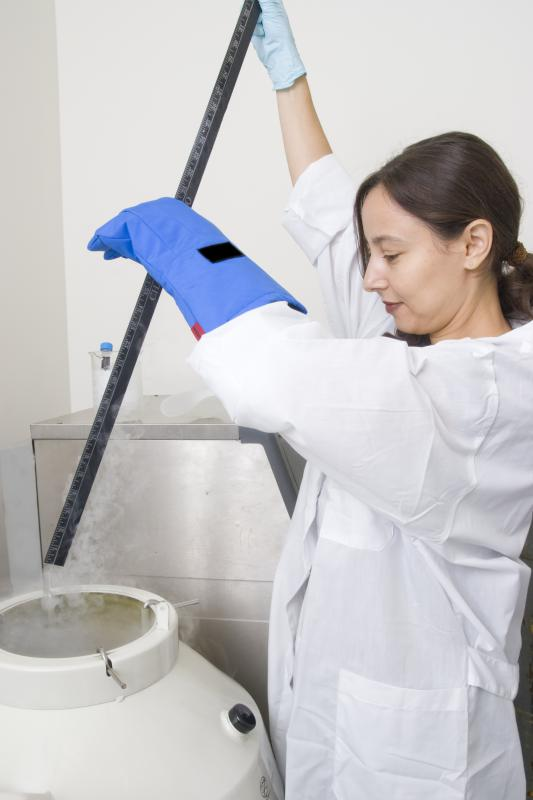 A person working in a lab.