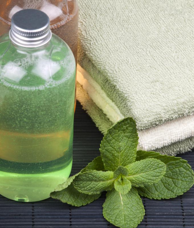 If you are looking for a hypoallergenic shampoo, you may wish to avoid those containing mint.