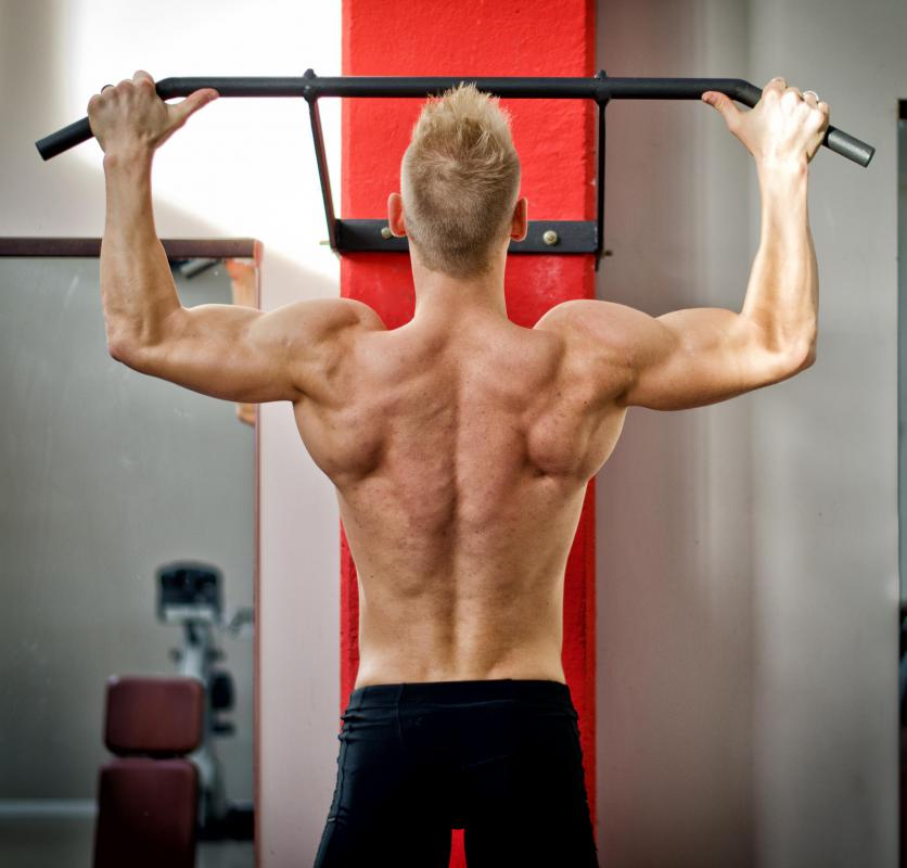 Many weight training machines target the back.