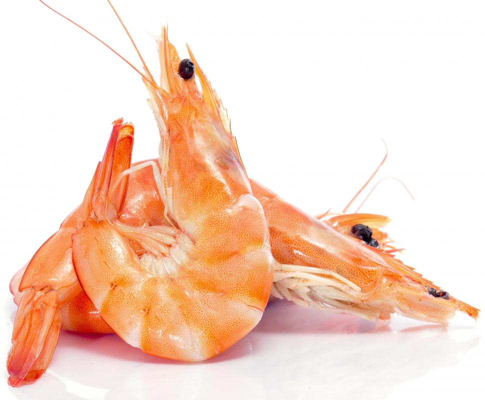 What Is Deep-Fried Shrimp? (with pictures)