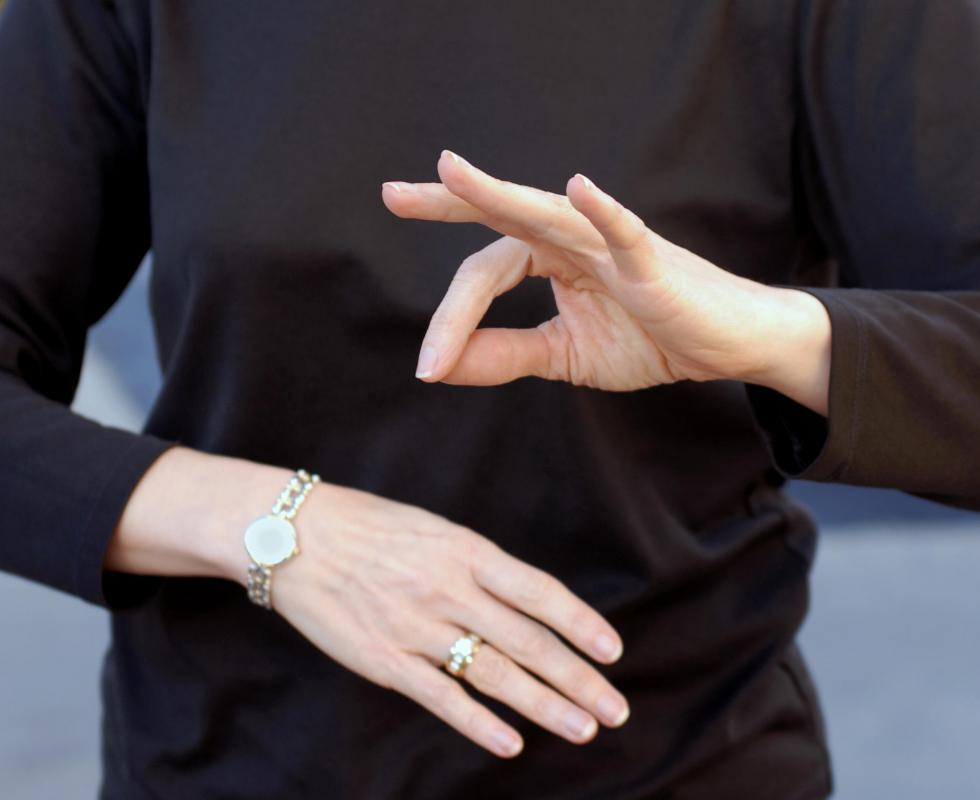 What Does A Sign Language Interpreter Do With Pictures
