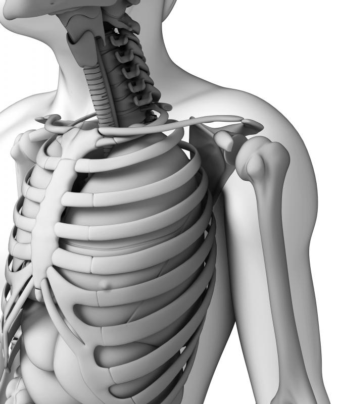 The sternum is in the front and center of the rib cage.