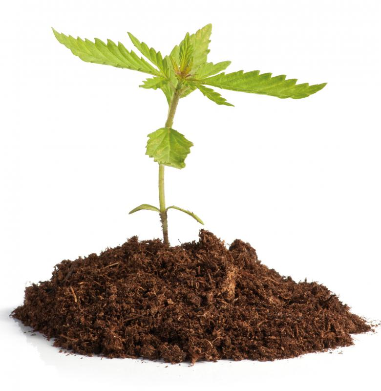 What are the different types of illegal drugs with pictures for Different uses of soil