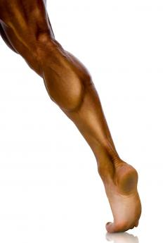 A standing calf machine exercises the calf muscles of the lower legs.