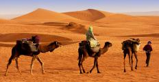 It is believed that what is now the Empty Quarter was once home to several cities that used caravans to trade among each other.
