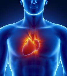Improper closing of the mitral valve can cause irregular beating of the heart.