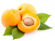 Apricots are sliced and sweetened to make apricot squares.