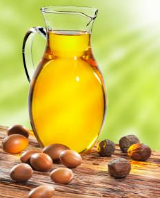 Argan oil is derived from the fruit of the native Moroccan Argan tree.