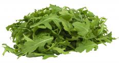 Arugula leaves are high in chlorophyll and dietary fiber.