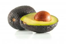 The avocado tree produces the avocado fruit.