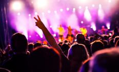 Live musical performances are also considered part of the industry.