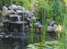A pond with a water aerator.