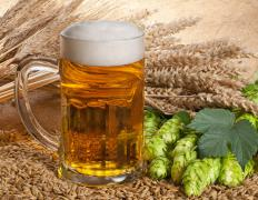 The high yeast content of beer can cause negative reactions among those with yeast intolerances.