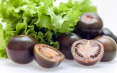 Black tomato varieties have been developed that are suitable for many different climates.