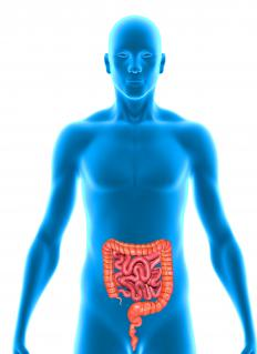 If a body has a need for a particular dipeptide, it can absorb it through the intestinal tract.