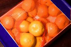 Japan refined the satsuma's cultivation.