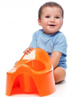 A potty chair should be purchased along with potty training pants.