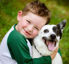 A playful dog is a good pet for many children.