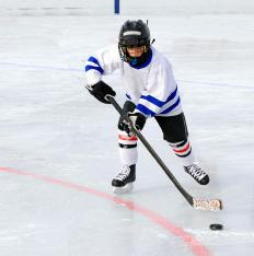 Sports boarding schools might prepare highly qualified athletes for ice hockey.