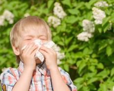 A parent should use caution when buying cologne for a child with allergies.