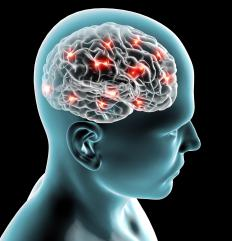 Neurotheology studies brain activity that takes place during spiritual experiences.