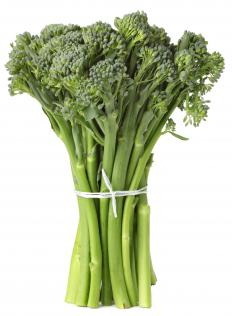 Broccoli raab is also referred to as rapini.
