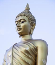 Buddha's teachings are followed by some who wish to achieve spiritual enlightenment.