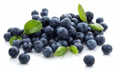 Blueberries make a tasty, nutritious oatmeal topping.