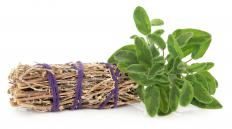 Meadow sage can be used in cooking.