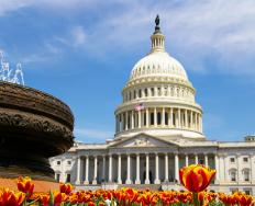 The Budget Act was designed by Congress to standardize the U.S. national budget.
