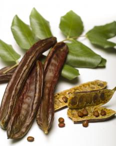 Carob is often used as an alternative to chocolate, which can trigger canker sores.