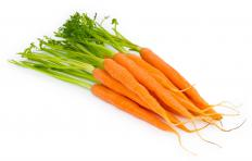 "Carrots, the inspiration for the phrase ""carrot and stick.""."