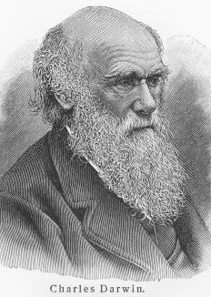 Charles Darwin theorized much of what is understood today about the survival of species via evolution.