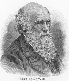 The Darwin Awards are named after Charles Darwin, the evolutionary pioneer.