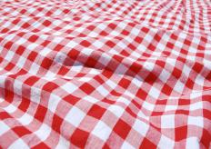 A tablecloth may be used in addition to placemats to protect a table from spills.