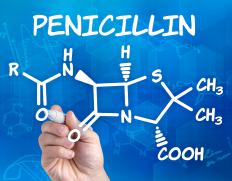 Penicillin is a broad spectrum antibiotic capable of treating a variety of bacteria.