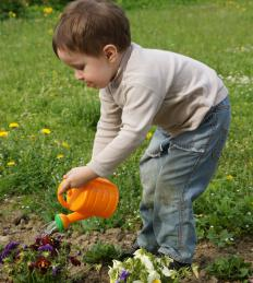 Child watering flowers in the morning, which is the best time of day to water a garden.