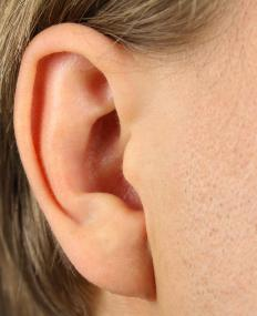 The antitragus is the small protrusion of firm flesh in the human ear that is responsible for deflecting sound waves into the ear.