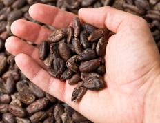 Cocoa beans contain extremely high levels of caffeine.