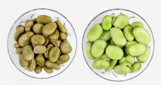 Fava beans are included in the Ark of Taste catalog.