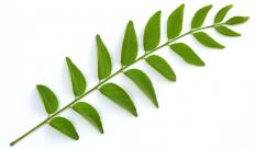 Curry leaves are a green vegetable found is rasam.